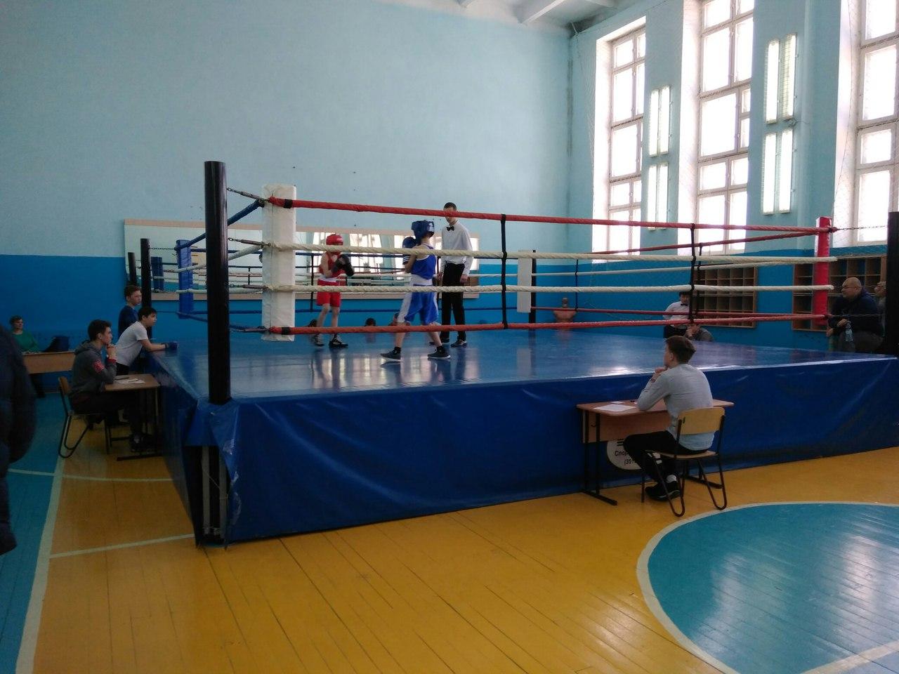 бокс (4)